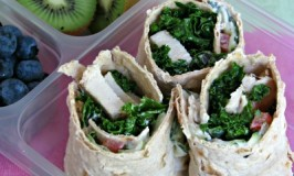 Greek Style Chicken Wrap