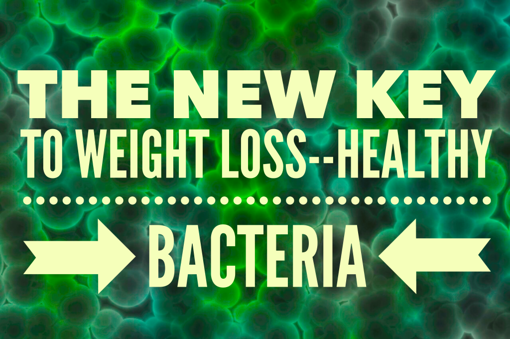 The Hidden Key to Weight Loss - Healthy Bacteria