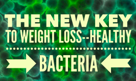 A New Key to Weight Loss–Healthy Bacteria